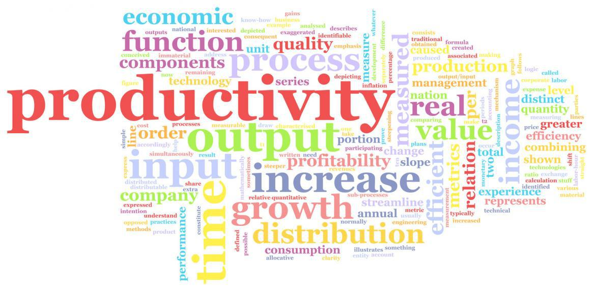 Employee Productivity and Diet